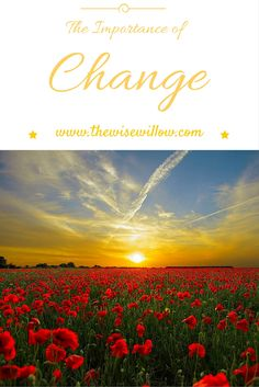 The Importance of Change--The Wise Willow