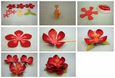 3D Cornflower, Hibiscus, and Aster Paper Flowers!