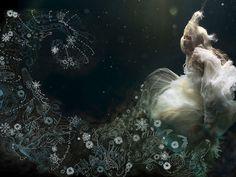paradis express: Zena Holloway