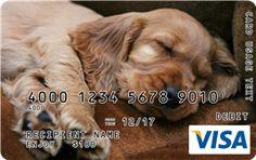 Sleeping Puppy Visa Gift Card Custom Gift Cards, Buy Gift Cards, Visa Gift Card, Sleeping Puppies, Branded Gifts