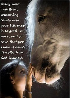 Good things from God / horse quote. I know this to be true with my horse. I thank God for putting him in my life everyday.