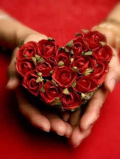 "gyclli: "" gyclli: "" Heart In Hand / by TEKIM "" Happy Valentine's Day Tumblr :)❤ """