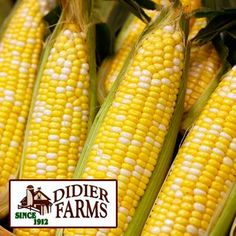 Savor peak Produce season! From nearby DIDIER FARMS, enjoy sweet BI-COLOR CORN at just 5 ears/$1. Another super sweet treat is SEEDLESS WATERMELON – rich in lycopene, large (12–15 lb avg wt) for only 4.99 ea. Northwest Red CHERRIES (at a low 3.99 lb) are premium, large, & loaded with antioxidants. Michigan BLUEBERRIES (1 pint pkg) are only 2/$5, & CHIQUITA BANANAS are just .59 lb. Much more, thru Wed