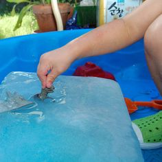Summer afternoon activity. Freeze dinosaurs into a block of ice, let kids excavate. Could add other items like trucks, of course...