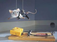 Des souris plus intelligentes grâce à nos cellules humaines