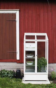 varpunen - kekkilä Mary Mary, Farmhouse Remodel, Urban Farming, Glass House, Garden Tips, My Dream Home, Cabins, Terrarium, Outdoor Gardens