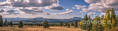 Panoramic View From Snowbowl :  http://fineartamerica.com/profiles/robert-bales/shop/all/all/all
