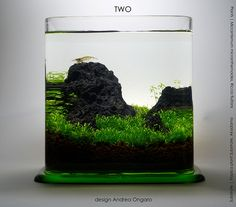 two liters by Andrea Ongaro