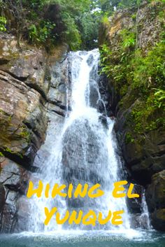 Hiking El Yunque to La Mina Falls - one of the highlights of Puerto Rico! #puertorico