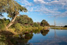 Savuti Camp - Linyanti, Botswana (eyesonafrica.net)