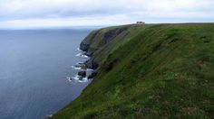 Cape St. Mary's Ecological Reserve | © Douglas Sprott/Flickr