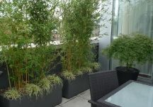 Garden Design With Petite Patio On Pinterest Planter Boxes, Artificial  Plants And With Landscaping Photos