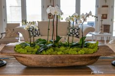 DIY orchid dough bowl centerpiece with reindeer moss Moss Centerpieces, Centerpiece Decorations, Graduation Centerpiece, Quinceanera Centerpieces, Wedding Centerpieces, Indoor Garden, Indoor Plants, Orchid Planters, Orchid Pot