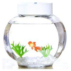 aquarium poisson magique 30 euros
