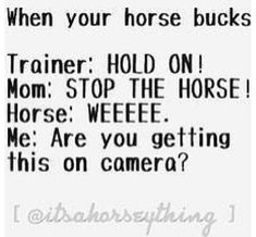 So my friend rides horses and this is literally exactly what she said.