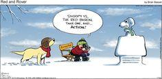 ACTION!   Read Red and Rover #comics @ www.gocomics.com/redandrover/2015/01/25?utm_source=pinterest&utm_medium=socialmarketing&utm_campaign=social-pin-crossover-peanuts65   #GoComics #webcomic #Peanuts #Snoopy