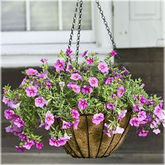 Cobraco Growers Style Hanging Basket