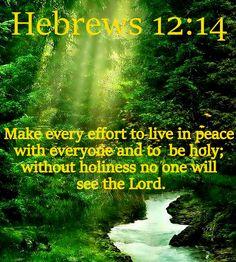<3 <3 Hebrews 12:14 (NLT)