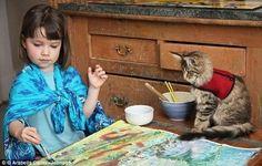 猫 自閉症 イギリス メインクーン 絵画 ネコに関連した画像-04