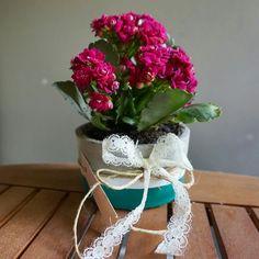 Flower Pots, Flowers, Handmade Crafts, Planter Pots, Flower Vases, Container Plants, Plant Pots, Florals, Home Crafts