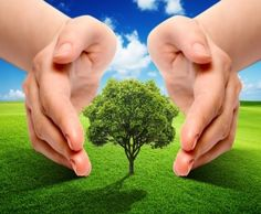 Merawat dan Menciptakan Lingkungan yang Bersih dan Sehat