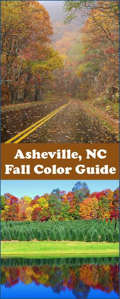 See the Asheville NC Fall Foliage Forecast and guide for peak color and best places to see: https://www.romanticasheville.com/fall.htm