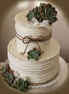 rustic wedding cake | Delana's Cakes: Rustic Wedding Cake with succulents