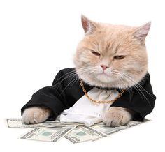 https://gigaom2.files.wordpress.com/2012/05/fat-cat-money.jpg
