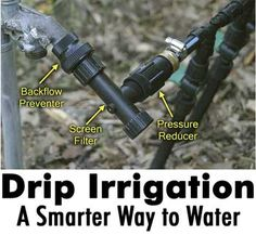 Drip Irrigation: A Smarter Way to Water Gardening Books, Gardening Tips, Sustainable Gardening, Water Plants, Cool Plants, Rain Collection, Rainwater Harvesting, Drip Irrigation, Water Systems