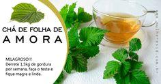 O chá de AMORAé utilizada medicinalmente amilhares de anos na China e na Índia, esta erva (as folh