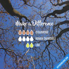 Make a Difference - Essential Oil Diffuser Blend
