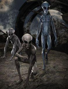 Greylien HD for Genesis 8 Male Science Fiction, Grey Alien, Star Family, Aliens And Ufos, Alien Creatures, Fantasy Inspiration, Sci Fi, Horror, Batman