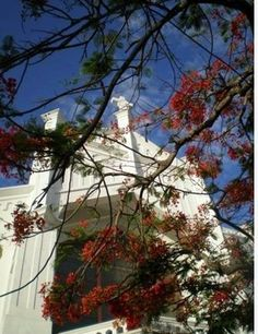 1000 Images About Beautiful Florida Chapels On Pinterest