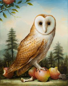 The Benevolent Owl by Kevin Sloan
