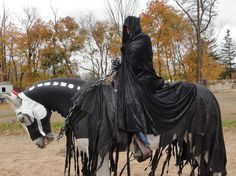 headless horseman costume with horse - Google Search