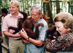 Koning DierenVriend - In 1995 bezoekt Prins Willem-Alexander samen met zijn ouders Koningin Beatrix en Prins Claus een rehabilitatieproject voor Orang-Oetangs in Indonesië.