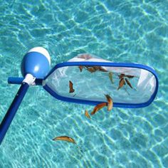 Skimz It Skimit Leaf Skimmer Swimming Pool Automatic