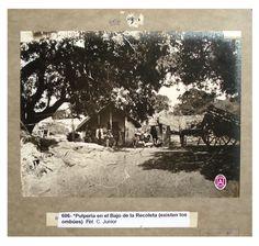 Imágenes de la Colección Witcomb, el archivo fotográfico más antiguo de la Argentina, que actualmente integran el patrimonio del Archivo General de la Nación. Datan de fines del siglo XIX y de principios del XX y entre ellas hay obras del fotógrafo Christiano Junior y otros autores.
