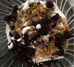 Blueberry Crunch High Protein Snack - Nutrition Twins