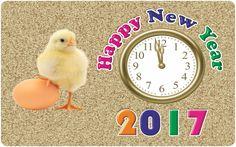 Funny Happy New Year 2017