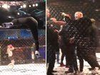 nice Conor McGregor Slaps Security Guard, Pushes MMA Ref in Post-Fight Blowup
