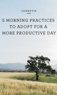 Morning routines are important in setting the tone for your day and establishing focus and priorities. /
