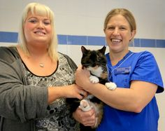 Photo of Spin the cat with owner and a PDSA vet