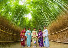 Arashiyama Bamboo Grove Photos & Tips - Travel Caffeine
