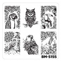 Nail Art Stamping Plates-Fuzzy and Ferocious - BM-S155, Pretty Birds