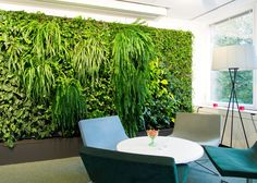 Plant Walls by Greenworks   Product