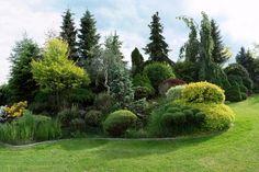 Jak na zahradu? Vyhněte se nejčastějším chybám - Dřevostavby Guzman - odborník na domy na klíč, rodinné domy a bungalov