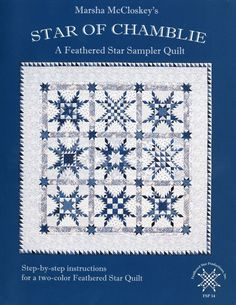 Step-by-step instructions for a deliciously scrappy two-color Feathered Star sampler quilt. Marsha opens the door to creativity with this collection of Feathere Two Color Quilts, Blue Quilts, White Quilts, Star Quilt Blocks, Star Quilts, Sampler Quilts, Antique Quilts, Vintage Quilts, Snowflake Quilt