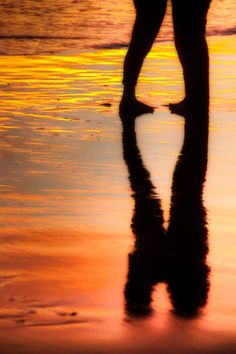 summer love reflection on the shoreline
