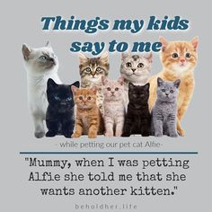 """Things Kids Say To Me """"Mummy, when I was petting Alfie she told me that she wants another kitten."""" I believe her! www.beholdher.life #thingskidssay #kidquote #funnykids #smartkids #kids #humor #kitties #kittens #Regram via @CHFyMscLn4T Things Kids Say, Seven Years Old, Hard Hats, Quotes For Kids, Funny Kids, Real Life, Kittens, Parenting, Kids Humor"""